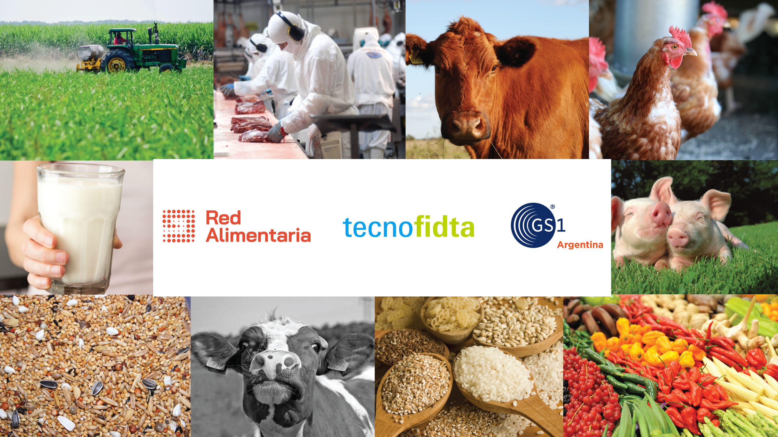 Red Alimentaria panel discussion